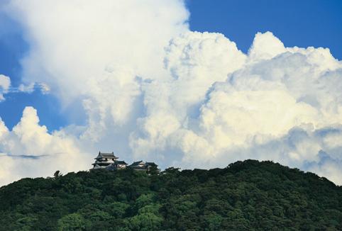photo by マツヤマワンコインアートプロジェクト
